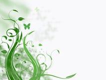 Весеннее время в зеленом цвете Стоковые Изображения RF
