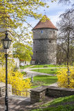 Весеннее время в средневековом городке Стоковое Фото