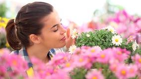 Весеннее время, женщина в саде маргариток видеоматериал