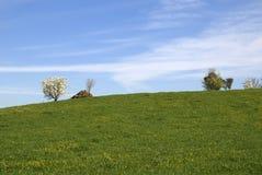 весеннее время ландшафта Стоковые Фотографии RF