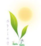 весеннее время логоса Стоковая Фотография RF