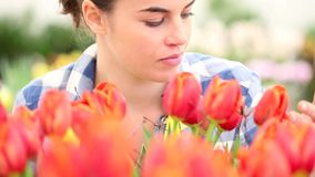 Весеннее время, усмехаясь женщина в саде с тюльпанами акции видеоматериалы