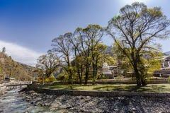 Весенний сезон ландшафта Стоковая Фотография RF