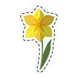 Весенний сезон цветка narcissus шаржа иллюстрация штока