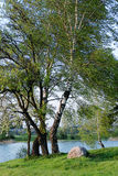 весна берега озера Стоковые Фотографии RF