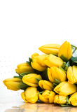 весна букета Стоковое Фото
