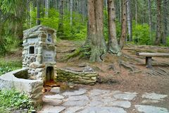 Весна воды горы в музее леса под открытым небом в Vydrovo Стоковое Изображение RF