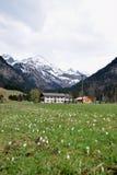 Весна в Альпах, Оберстдорф, Германия Стоковое Фото