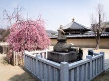 Весна в буддийском виске Стоковое Изображение RF