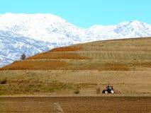 Весна в горах Стоковые Изображения RF