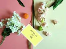 Весна в цветках воздуха и c приносит плоды еда m Eco vegan натюрморта концепции предпосылки Яблока стоковые изображения