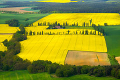 Весна в Центральной Европе - взгляд глаза птицы Стоковые Изображения