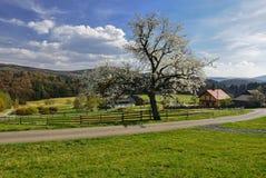 Весна в чехословакской сельской местности Стоковое Фото