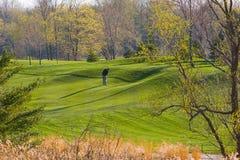 весна гольфа Стоковые Изображения