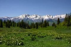 весна горы Стоковая Фотография