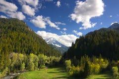 весна горы Стоковое Изображение