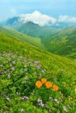 весна гор ландшафта стоковая фотография rf