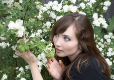 весна девушки bush после полудня стоковые фото