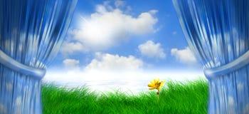 весна дня daisey иллюстрация вектора