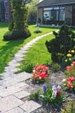 весна дома Стоковое Фото