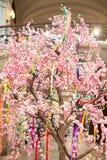 Весна дерева зацветает пинк белых цветков Стоковая Фотография