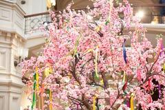 Весна дерева зацветает пинк белых цветков Стоковое Изображение