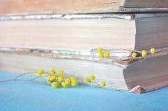 весна жизни все еще Стог старых книг с желтыми цветками мимозы весны Пастельный и мягкий обрабатывать фокуса стоковое изображение rf