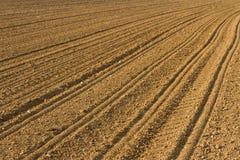 весна засаженная полем Стоковые Фотографии RF