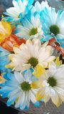 весна иллюстрации букета предпосылки декоративная Стоковые Фотографии RF