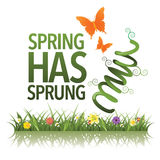 Весна имеет поскакенный дизайн Стоковое Изображение