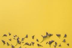Весна или предпосылка лета с космосом экземпляра для текста от верхней части Стоковые Изображения