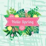 Весна карты шаблона здравствуйте с тропическими листьями иллюстрация штока