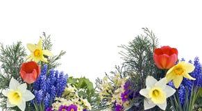 весна коллажа Стоковые Фото