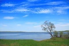 весна ландшафта Стоковая Фотография RF