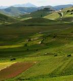 весна ландшафта castelluccio Стоковое фото RF