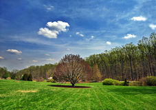 весна ландшафта Стоковые Изображения RF
