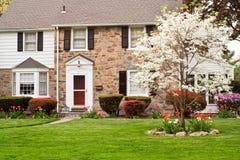 весна лужайки дома семьи передняя Стоковое Изображение RF