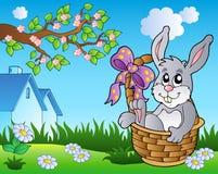 весна лужка зайчика корзины бесплатная иллюстрация