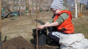 Весна Мальчик засаживая фруктовые дерев дерев рядом с жилым домом мульти-этажа Экологичность, засаживая саженцы дальше акции видеоматериалы