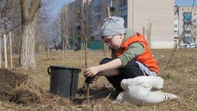 Весна Мальчик засаживая фруктовые дерев дерев рядом с жилым домом мульти-этажа Экологичность, засаживая саженцы дальше видеоматериал
