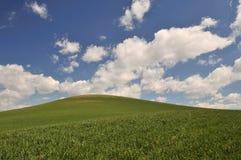 весна места сельской местности colfax Стоковые Изображения RF