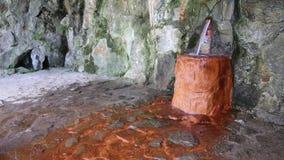 Весна минеральной воды сток-видео