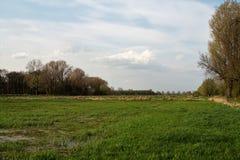 Весна на реке Niers Стоковая Фотография
