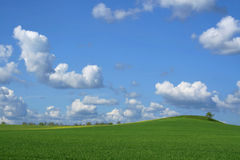 весна неба Стоковые Фото