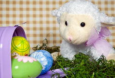 весна овечки Стоковое фото RF