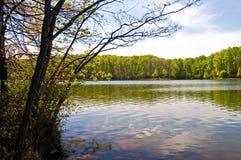 весна озера стоковое фото rf
