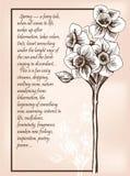 Весна открытки Стоковое фото RF