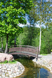 весна парка моста Стоковые Изображения