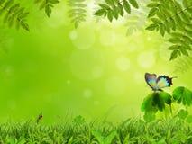 весна пейзажа Стоковое Изображение RF