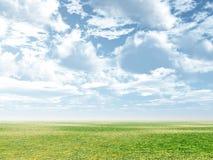 весна пейзажа Стоковые Фотографии RF